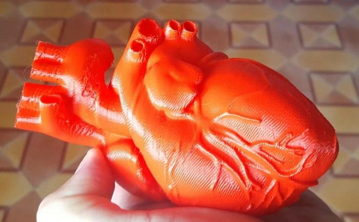 impresión 3D de un corazón
