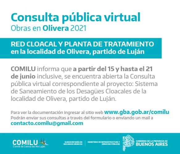 Consulta Pública Virtual