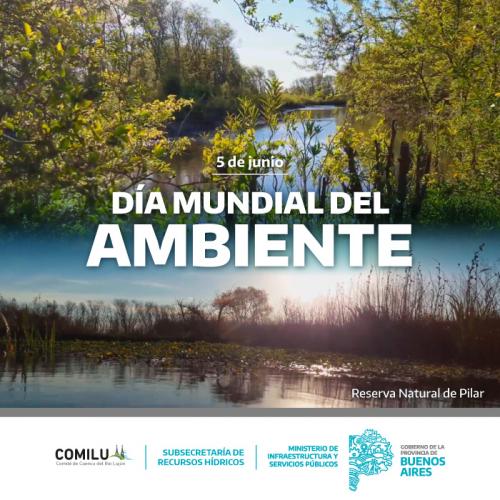Día Mundial del Ambiente.