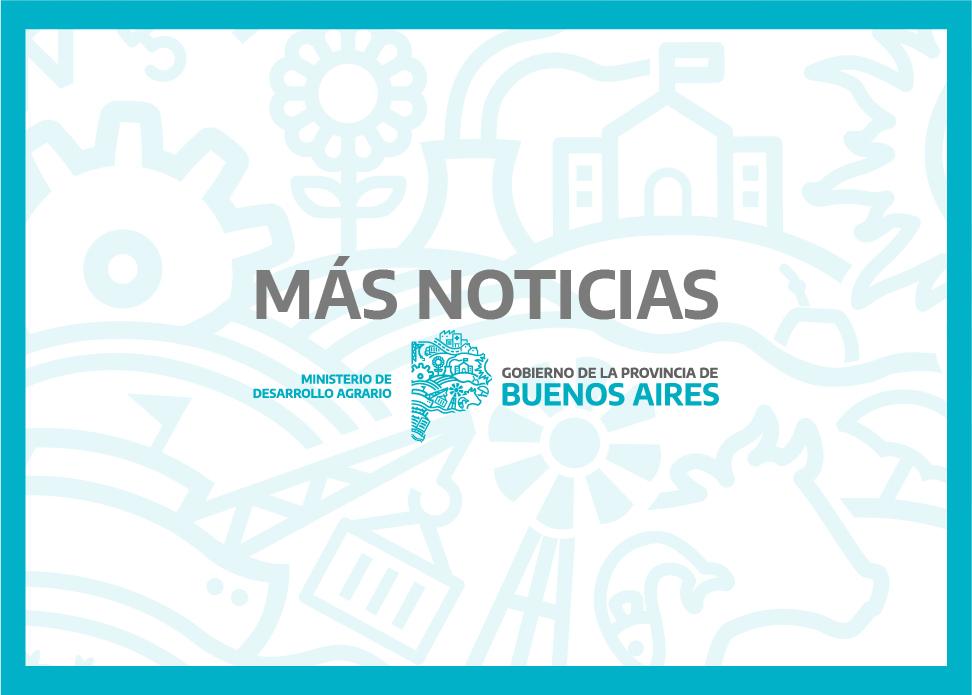MÁS NOTICIAS 07/05/2021