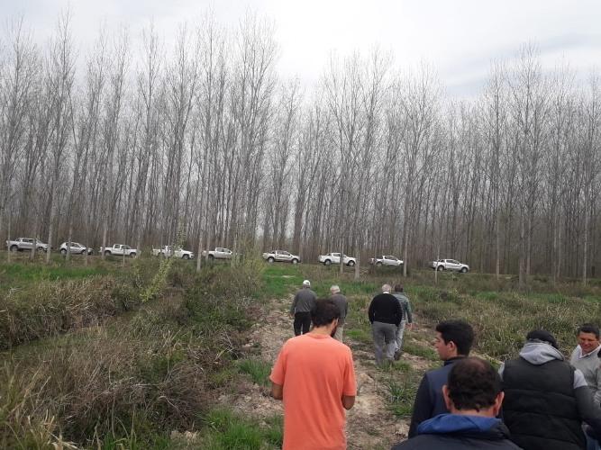 Convocan a escuelas agropecuarias del sudoeste bonaerense a presentar proyectos forestales