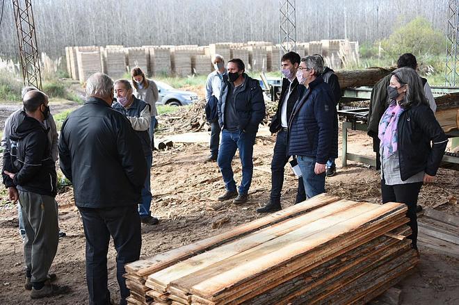 Rodríguez presentó el Plan de Incentivos Forestales en el Delta