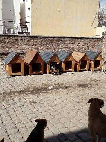 Donamos cuchas fabricadas por internos a un refugio de canes