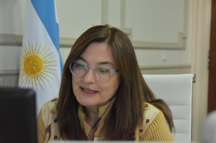 La Ministra Estela Díaz presentó el informe sobre intentos de femicidios