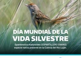 Desde el Comité de Cuenca del Río Luján nos sumamos visibilizando una de las especies presentes en la cuenca.